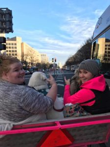 Take your Dog around DC