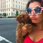 Bring your dog on the only DC Tour
